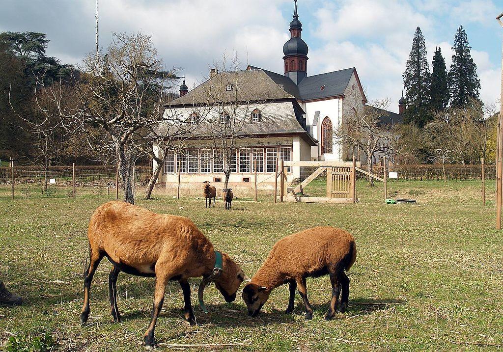 Naturraum Kloster Eberbach