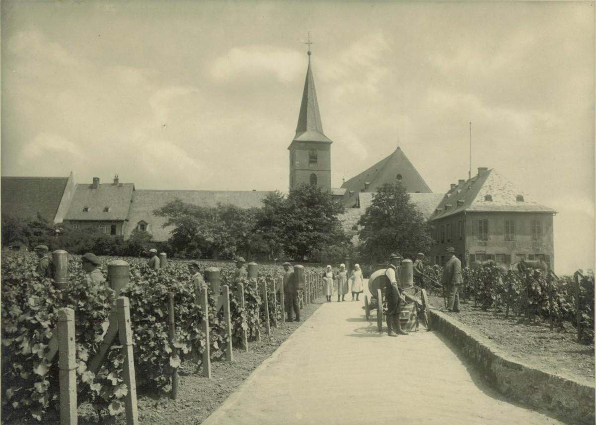 schloss-hochheim